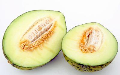 Comidas veraniegas. Tiempo de melones